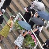Die Zuschauer stehen mit Schirmen auf den Rängen.