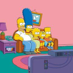 """""""Die Simpsons""""  seit 1989"""