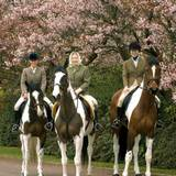 Drei Generationen Reiter: Prinzessin Anne, Queen Elizabeth und Zara Phillips unternehmen einen Oster-Ausritt 2004. Damals ist die britische Königin gerade 78 geworden. Auch heute noch, mit 89 Jahren, steigt sie in den Sattel.