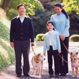 Als Prinzessin Aiko noch klein ist, hat die Familie sogar zwei Hunde.