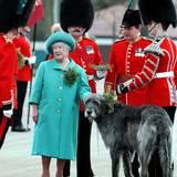Queen Mum begegnet am St. Patricks Day 1997 einem großen Wolfshund. Das Überreichen des Kleestraußes an die Irish Guards hat inzwischen Herzogin Catherine übernommen, die in High Heels den Hund auch deutlich mehr überragt ...