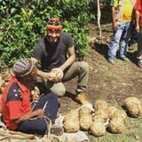Als Botschafter des Fußballs möchte er den Menschen seine Leidenschaft näher bringen. An seinem ersten Tag bastelt Beckham Fußbälle aus Bananenbaumblättern.