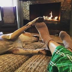Es ist der erste Feiertag, den Kaley Cuoco nach ihrem Ehe-Aus von Ryan Sweeting als Single feiert. Alleine ist sie dennoch nicht. Sie macht es sich auf der Couch mit Hund Norman gemütlich.