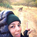 Eva scheint's in Indien tierisch gut zu gefallen. Hier beobachtet sie aus unsicherer Entfernung einen Tiger, der angeblich gerade chillt.