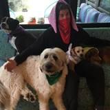 Oktober 2016   Es ist nicht einfach nur ein tolles Foto vom Liam Hemsworth, eingerahmt mit seinen Hunden. Der Schauspieler macht gleichzeitig auf eine Aktion aufmerksam. Mit Kauf dieser Tücher unterstützt er in Australien junge Leute, die an Krebs erkrankt sind oder ein Familienmitglied an Krebs leidet.