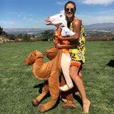 Heidi Klum reitet mit einem Pferd auf einem Kamel? Auch die Modelmama hat für dieses schräge Foto keine Erklärung.