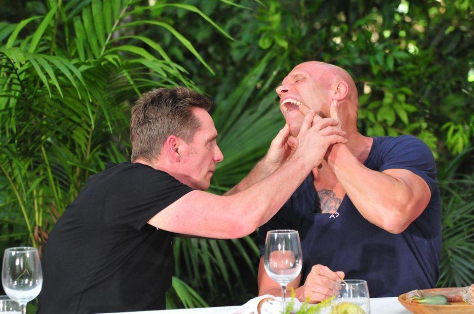 Tag 1  Thorsten Legat hat sich ein Stück von seinem Zahn am Ochsenpenis abgebrochen. Jürgen Milski inspiziert, wie groß der Schaden ist.