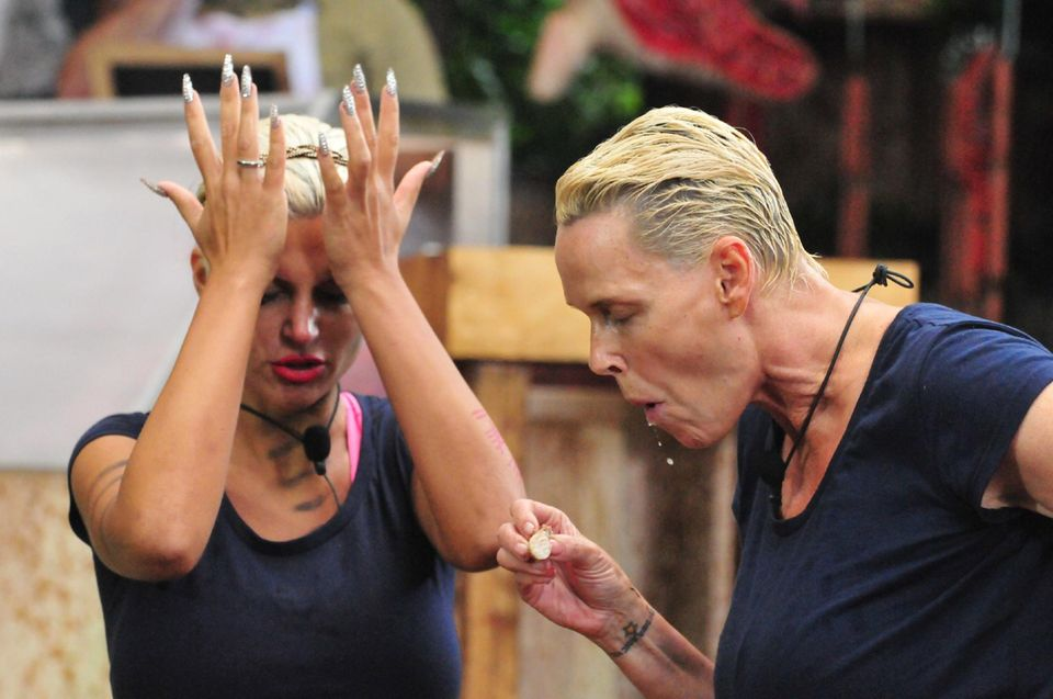 Tag 12  Sophia Wollersheim und Brigitte Nielsen wurden von der Campgemeinde zur Dschungelprüfung geschickt. In der Dschungel-Metzgerei gibt es viele dschungeltypische Leckereien.