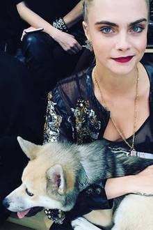 """Ihre Freundin Cara Delevingen hält sich währenddessen im """"Grand Palais"""" auf. Anstatt über den Catwalk zu laufen, begutachtet sie die Kollektion von der ersten Reihe aus und knuddelt dabei mit dem Show-Stopper des Tages, einem zuckersüßen Hündchen."""
