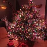 Die Soudiva feiert einfach noch mal weiße Weihnachten.