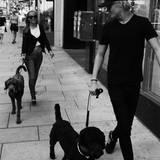 Zusammen mit einer Freundin führt Marius seinen geliebten Hund Muffin spazieren. Der Look dazu: schlicht, sportlich, schwarz.