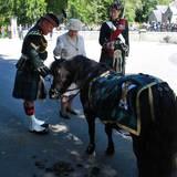 8. August 2016: Queen Elizabeth inspiziert im schottischen Balmoral die Garde und lässt es sich als Pferdefan nicht nehmen, das Pony in Uniform, das zur Ehrengarde gehört, genauer anzuschauen. Peinlich nur, dass es ausgerechnet in Anwesenheit der obersten Dienstherrin geäppelt hat ...
