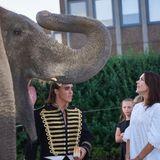 8. September 2016: Prinzessin Mary nimmt an einer Wohltätigkeitsveranstaltung zugunsten der Nierenvereinigung in Kopenhagen teil. Dabei darf sie sich mit einem großen Gast unterhalten. Sie trifft den Zirkuselefanten und scheint ganz schein beindruckt von der Erscheinung.