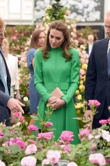 Prinz Harry, Herzogin Catherine und Prinz William nehmen die 4,5 Hektar große Ausstellungsfläche genauestens unter die Lupe.