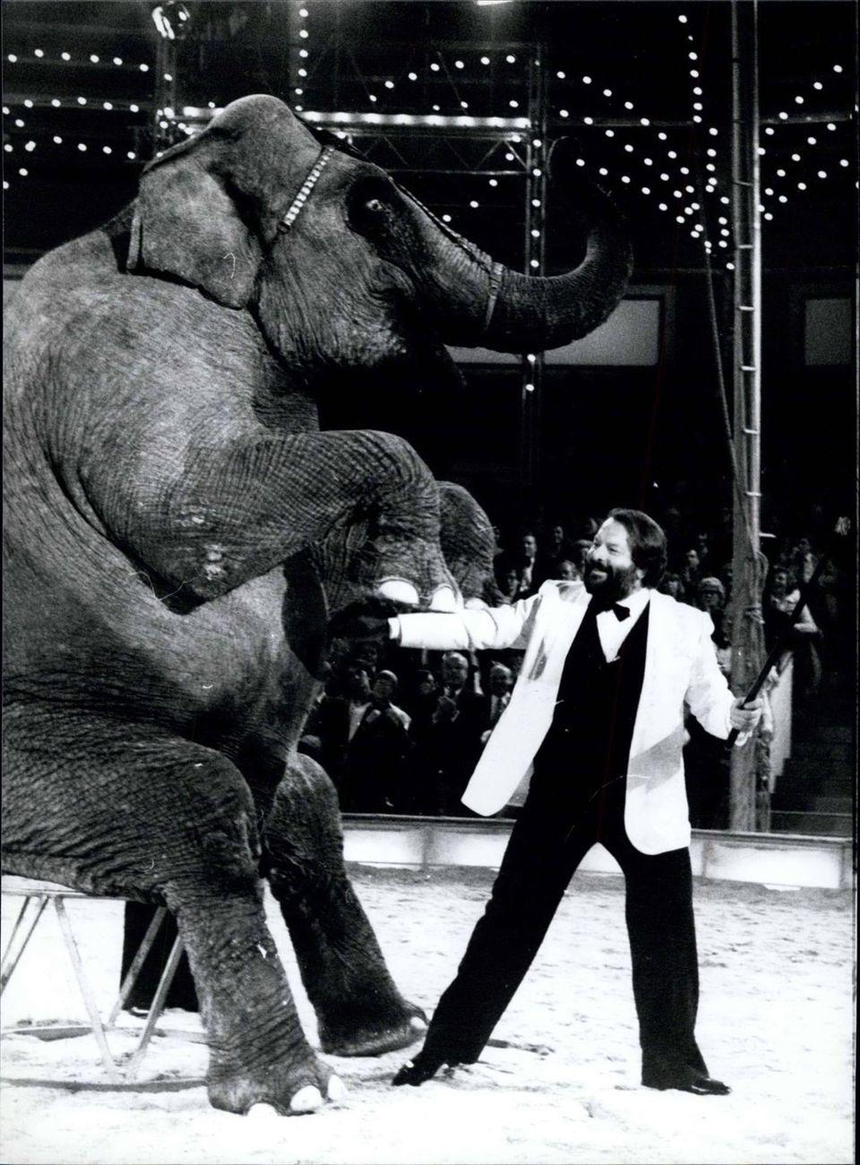 """November 1978  Bei """"Stars in der Manege"""" in München zähmt Bud Spencer einen Elefanten."""