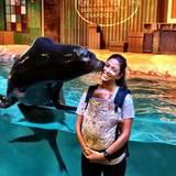 Ein Küsschen von Diego dem Seelöwen für Mama Nicole Michele Johnson. Baby Boomer beeindruckt es wohl nicht wirklich, er schaut gelangweilt auf die andere Seite.