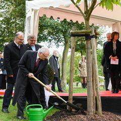 Tag 4  Symbolische Geeste: König Carl Gustaf pflanzt einen Baum in Wittenberg.