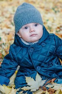 4. November 2016  In Schweden wird mit diesem süßen Foto von Prinz Oscar der Herbst eingeläutet. Verträumt sitzt der royale Nachwuchs warm eingepackt im Laub.