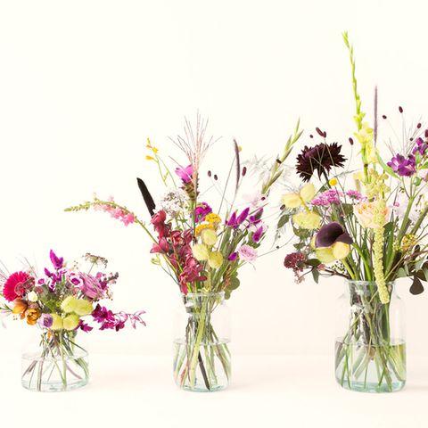 Blumen konservieren: So geht's