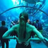 Stefanie Giesinger staunt über die tolle Kulisse in einem Aquarium in Dubai.