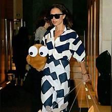 Nein, dies ist kein Zwergspitz mit riesigen Augen. Es ist Victoria Beckhams neue Tasche aus Teddybär-Kunstfell. Die Freude ist so groß, dass die Design-Diva ein Rudel Hunde dazu mogelt.