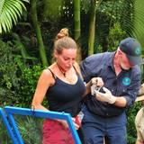 Nachdem Kader Loth den berühmten Satz gesagt hat, darf auch ein Konkurrent des anderen Teams die Dschungelprüfung abbrechen. Gina-Lisa ist völlig aufgelöst und nimmt dieses Angebot gerne an.