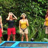 """Beim vierten Dschungelduell treten Gina-Lisa und """"Honey"""" aus dem """"Base Camp"""" gegen Kader und Hanka aus dem Team """"Snake Rock"""" an."""