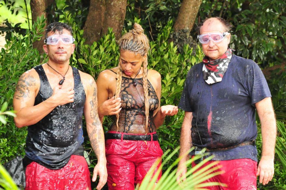 Marc Terenzi, Sarah Joelle Jahnel und Markus Majowski müssen gemeinsam eine Dschungel-Prüfung absolvieren.