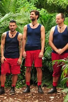Die männlichen Kandidaten des Dschungelcamps 2017