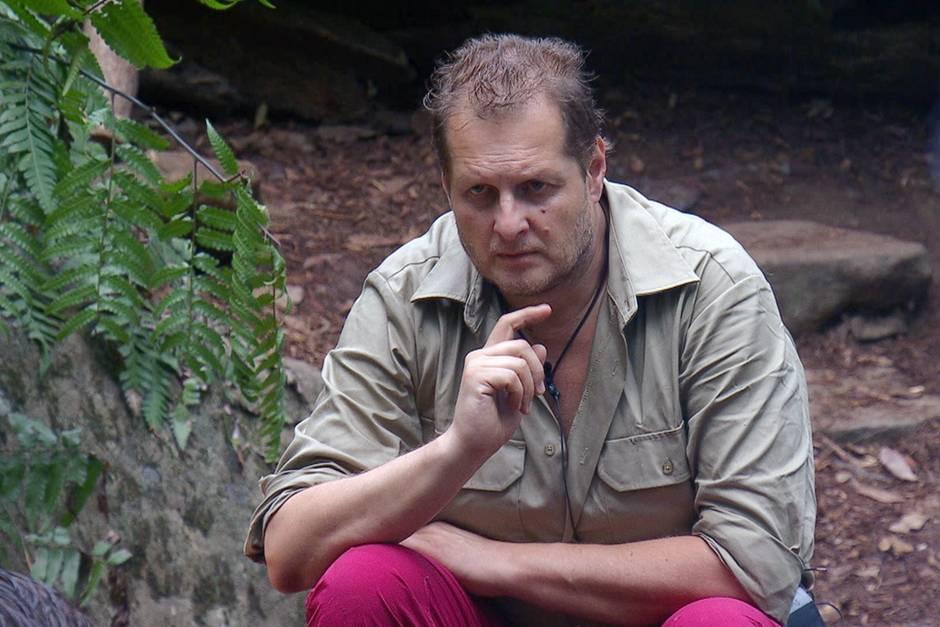 Jens Büchner Dschungelcamp
