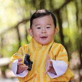 5. Februar 2017  Herzlichen Glückwunsch, kleiner Prinz! Heute wird Jigme Namgyel Wangchuck ein Jahr alt. Mit einem zuckersüßen neuen Kalenderbild feiert der Hof diesen Anlass und alle Bhutaner können via Facebook gratulieren.