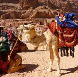 """Jordanien  Eine romantische Heißluftballonfahrt, ein Ritt auf Kamelen und ein Abendessen in der Wüste - das bot Christian Tews in der 4. Staffel """"seiner"""" Susi beim Dream-Date in Jordanien.  Wer es abenteuerlustig mag, dem empfiehlt der Reise-Experte """"Travelcircus"""" einen Abstecher in die Wadi Mudschib, eine Schlucht östlich des Toten Meeres, die dem Grand Canyon ähnelt."""