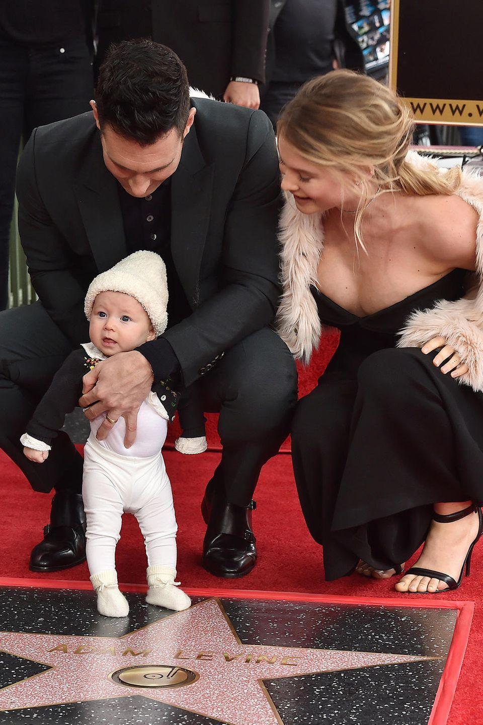 """10. Februar 2017  Dusty Rose stiehlt Papa Adam Levine die Show.Der Maroon 5-Sänger durfte bei der offiziellen Zeremonie seinen Stern auf dem """"Walk of Fame"""" enthüllen. Als Unterstützung hatte er seine Frau Behati Prinsloo und seine vier Monate alte Tochter dabei."""