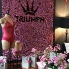 Secret Fitting Suite von Triumph