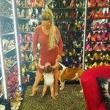 Bei diesem Schuhschrank dürfte so manche Frau vor Neid erblassen. Bei Coco Austin stehen farblich sortiert jede Menge High Heels in den Regalen.