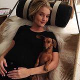 Im heimischen Sessel entspannt Rosie Huntington-Whiteley fern von Hollywood. Zu ihrem Relaxing-Programm gehört neben ihrem Hündchen auch ein gemütliches Styling bestehend aus Shirt und Jeans.