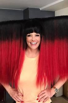 Huch, wie sieht die Katze denn aus? Diese verrückte Perücke schaut eher nach Lady Gaga aus. Plant Daniela nun wieder eine Karriere auf der Bühne?