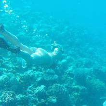 12. April 2017    Sarah Connor schickt uns Urlaubsgrüße beim Tauschen mit einer Schildkröte. Bei den knackigen Kurven kann man kaum glauben, dass die Pop-Sängerin erst vor kurzem ihr viertes Kind zur Welt gebracht hat. Wo sie sich genau aufhält, bleibt allerdings Sarahs Geheimnis.