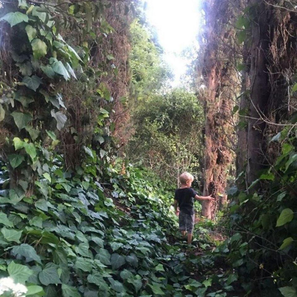 """22. April 2017  """"Wenn der Planet nicht wichtig für dich ist, denke daran, wem du ihn überlässt"""" - postet Josh Duhamel zum """"Earth Day"""" und zeigt ein Foto seines Sohnes Axl beim Erforschen der Natur."""