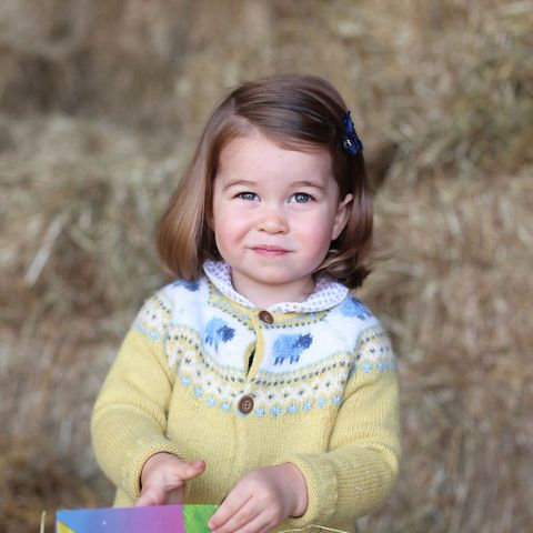 1. Mai 2017  Einen Tag vor ihrem zweiten Geburtstag veröffentlicht das Königshaus ein neues Foto von Prinzessin Charlotte. Aufgenommen wurde das zuckersüße Porträt von Herzogin Catherine selbst.
