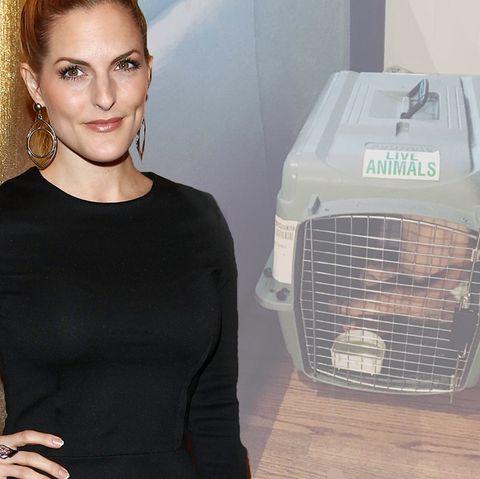 Sandy Mölling stellt ein Foto auf Facebook, auf dem ihr Sohn Noah in einem Hundekäfig zu sehen ist