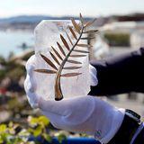 """Die """"Goldene Palme"""" ist die höchste Auszeichnung des Filmfestivals und wird frisch poliert präsentiert."""