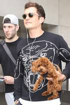 Als wir dieses Foto von Orlando Bloom entdecken, sind wir verwirrt: Das Hündchen, das er hier im Arm trägt, gehört doch Katy Perry?! Sind die zwei etwa wieder zusammen und Orlando passt für sie auf den kleinen Nugget auf? Aber nein. Das ist nicht Katys Hund und die zwei sind noch immer getrennt. Trotzdem: Die Ähnlichkeit der niedlichen Vierbeiner ist verblüffend...