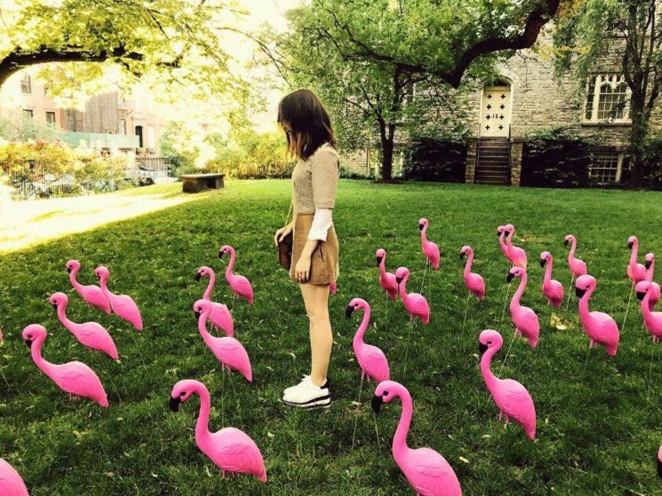 """8. Juni 2017  """"Nur ein Haufen Vögel im Paradies"""", postet Lily Collins zu diesem doch sehr ungewöhnlichen in New York entstandenen Foto."""