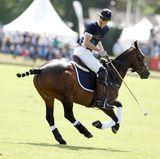 Jetzt muss Prinz William an die Arbeit: Ein bisschen Polo wird dann auch noch gespielt.
