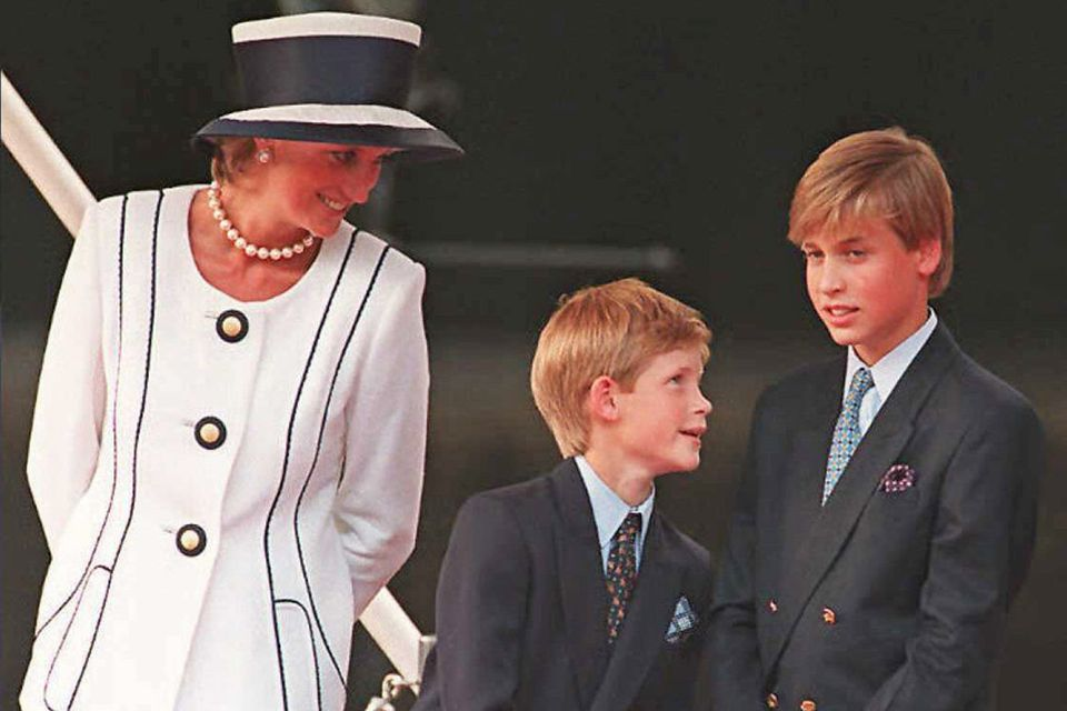 Prinzessin Diana (†), Prinz Harry, Prinz William