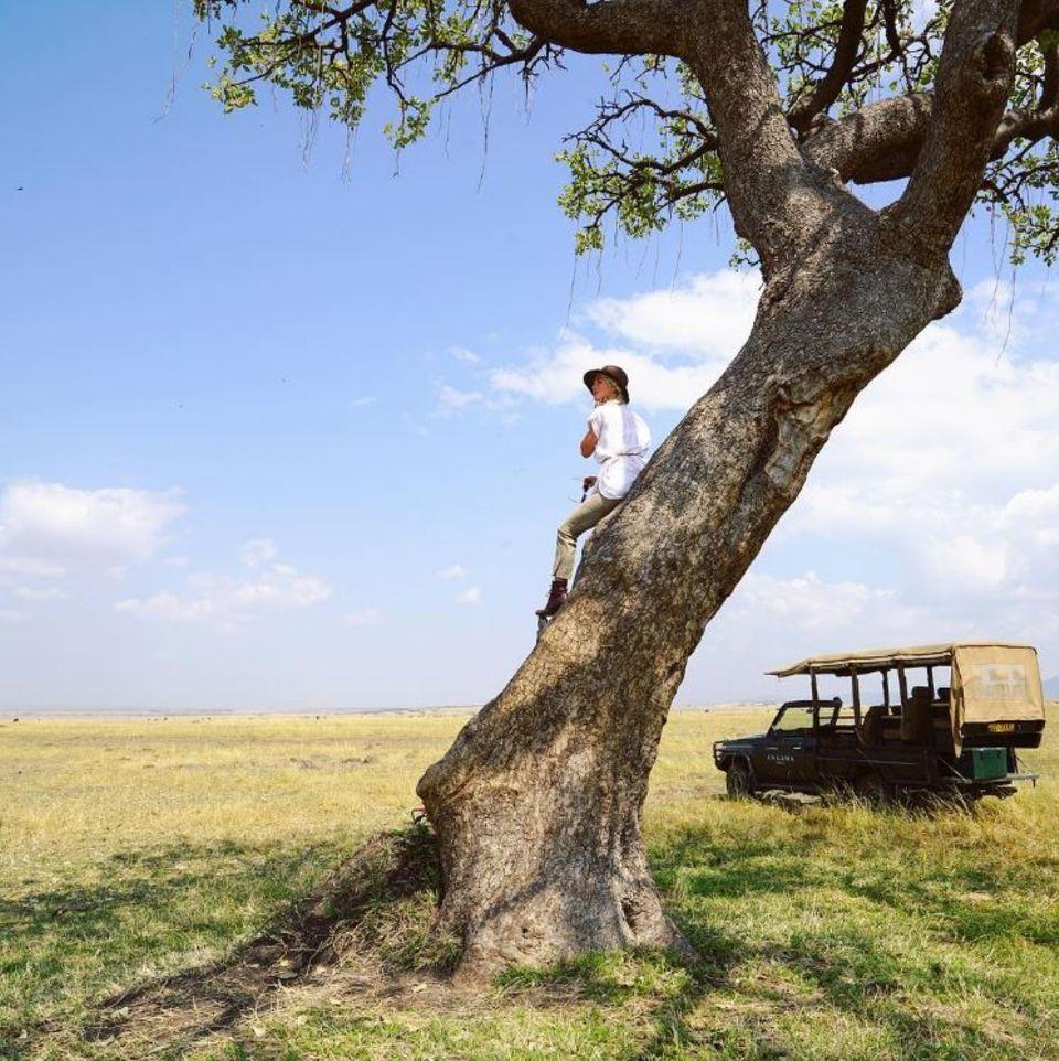 """Julianne Hough + Brooks Laich  Auf in die Flitterwochen-Savanne: Julianne Hough teilt ein Foto aus dem """"Masai Mara National Park"""" in Kenia."""
