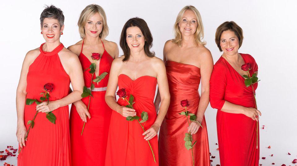 """Die Titelheldinnen von """"Rote Rosen"""" (v.l.n.r.): Cheryl Shepard (""""Sydney Flickenschild"""", Staffel 13), Saskia Valencia (""""Katja Meissner"""", Staffel 7), Patricia Schäfer (""""Helen Fries"""", Staffel 14), Anne Moll (""""Nora Franke"""", Staffel 12 ) und Annett Kruschke (""""Charlotte Kröger"""", Staffel 4 )"""
