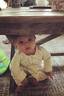 13. August 2017  Ein guter Platz zum Verstecken: Schauspielerin Amy Smart spielt mit Töchterchen Flora Verstecken.