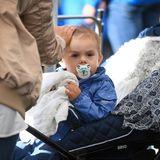 10. September 2017  Der kleine Prinz Oscar guckt ziemlich verschlafen aus seinem Kinderwagen.
